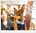 DSC_0228-20111003.jpg