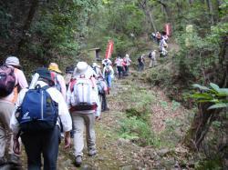 鉢ガ峰登山口2