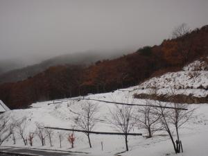 新入山雪景色