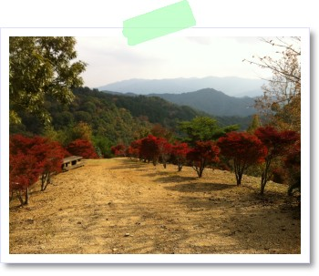 神山森林公園