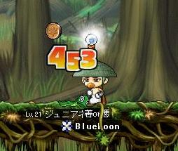 Maple1018.jpg