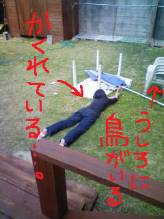 90319撮影donco3