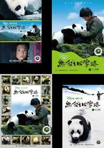 熊猫回家路の本