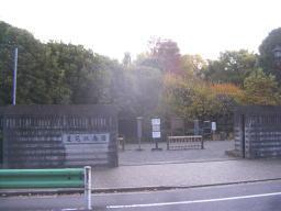 donguri120225_4