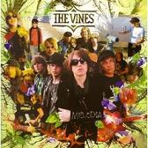 the vines/melodia