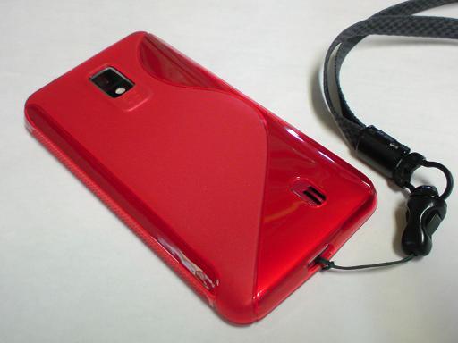 DSC00350_20120319082921.jpg