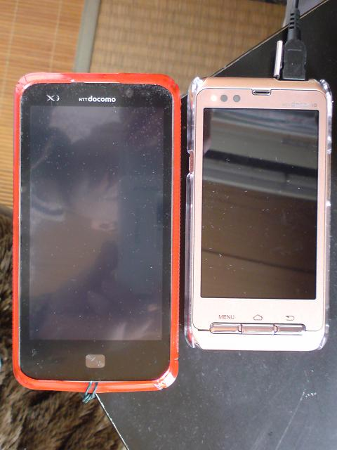 DSC00400_20120326124742.jpg
