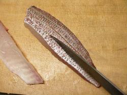 真鯛炙り05