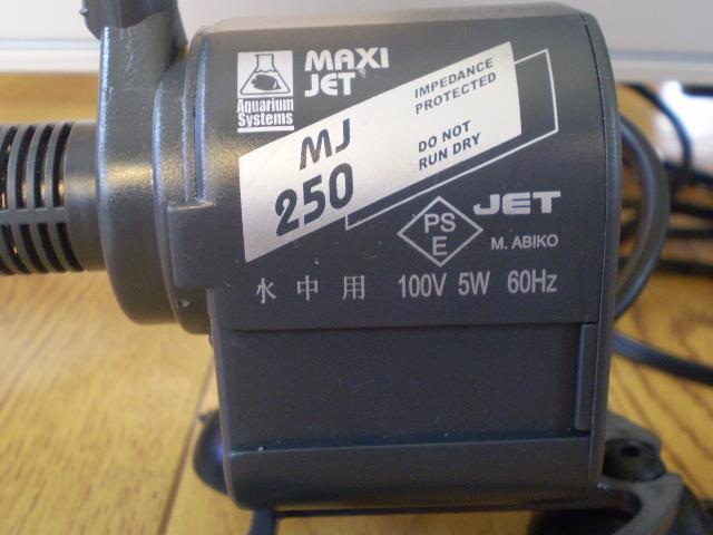 P5100555.jpg