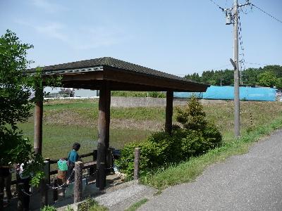 200806081.jpg