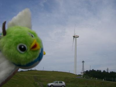 鳥取放牧場風力発電所に着いたよ~