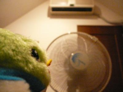 扇風機を使ってみたよ