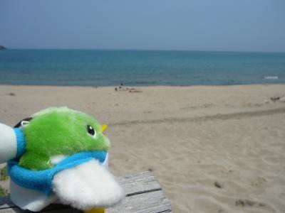 海に来たよ