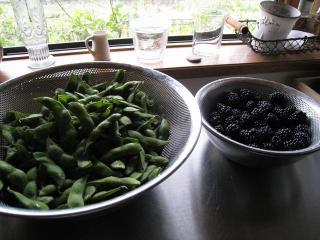 ブラックベリーと枝豆7.17