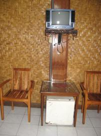 TV、冷蔵庫