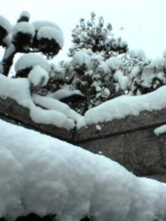 020050201_snow.jpg