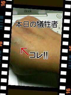 20050301_kekkann.jpg