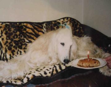 エグレアお誕生日 お肉ケーキ2004