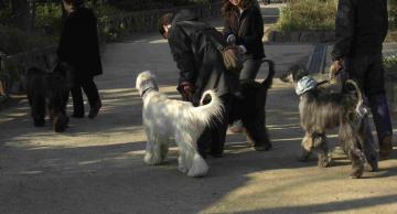 お散歩1-碑文谷公園