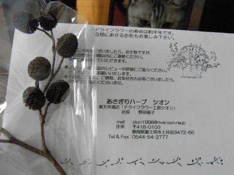 20090706/11