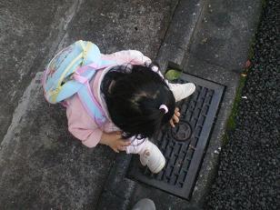 20081107a.jpg