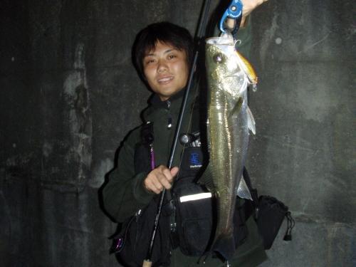 2008.10.11安治川シーバス2