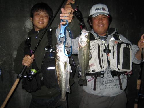 2008.10.11安治川シーバス