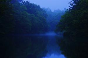 早朝の雲場池01