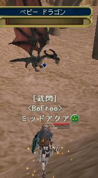 なんていうか基本に忠実な形のドラゴンね