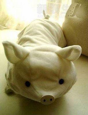 豚ぬいぐるみ1