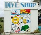 e's Diving