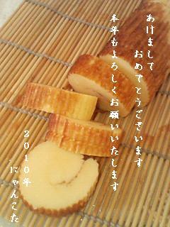 P1031091-2.jpg