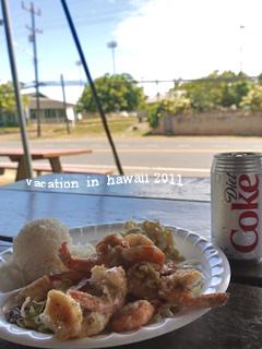 hawaii2011-13.jpg