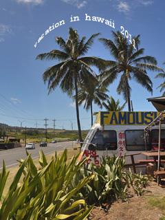 hawaii2011-14.jpg