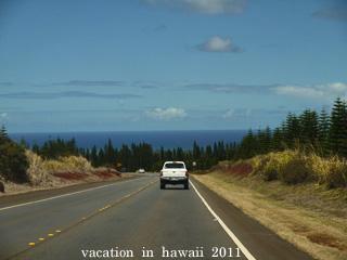 hawaii2011-16.jpg