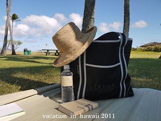 hawaii2011-17.jpg