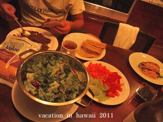 hawaii2011-7.jpg