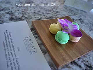 hawaii2011-8.jpg