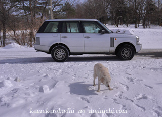 kemel2012-2.jpg