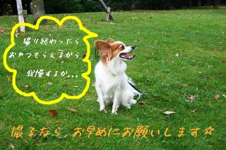 香澄公園3