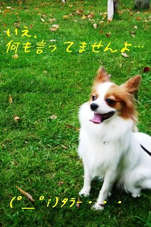 香澄公園2