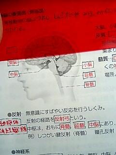 20080125023230