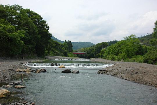 field-yamaai09.jpg