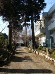 竜禅寺参道