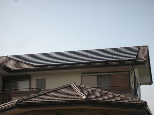 DSCN4975.jpg