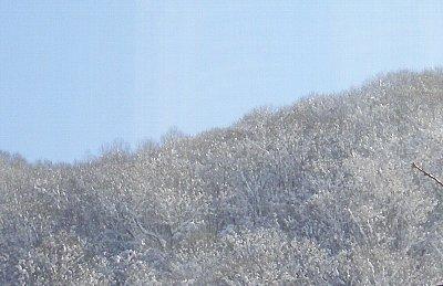 南側の山の「際」