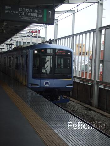 20090625DSCF4690.jpg