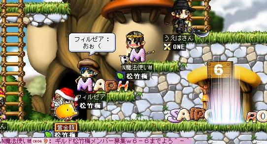 Maple0001_20090202162714.jpg