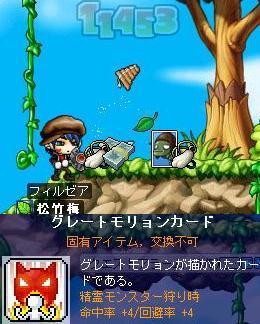 Maple0008_20090202163836.jpg