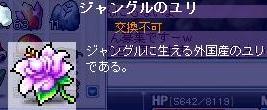 Maple0013_20090202164326.jpg